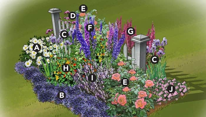 Flower garden layout