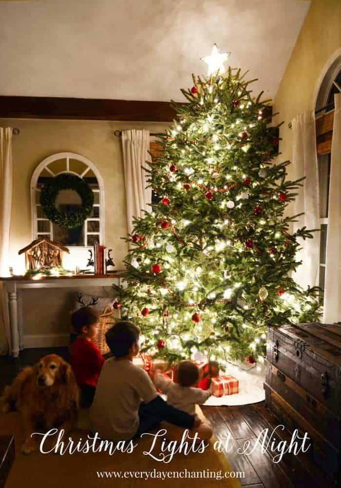 Christmas Lights at Night Tour