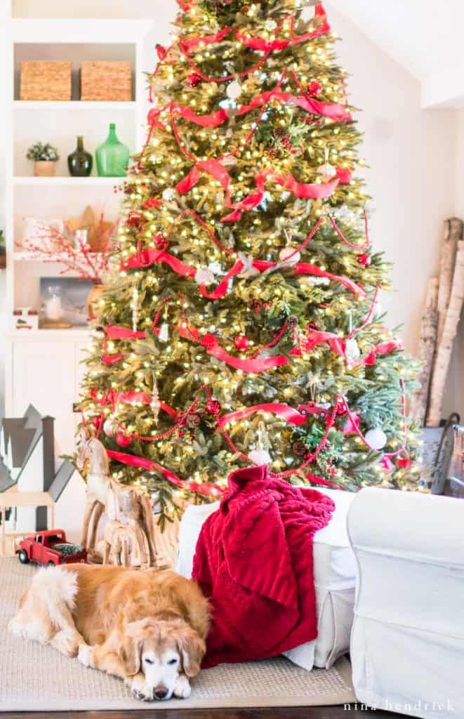 Christmas Tree with Golden Retriever