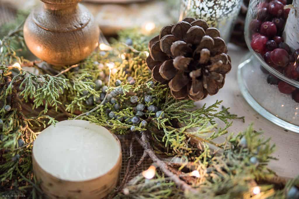Christmas 2016 Nina Hendrick Holiday Housewalk | Juniper, Pinecone, and Birch Tablescape