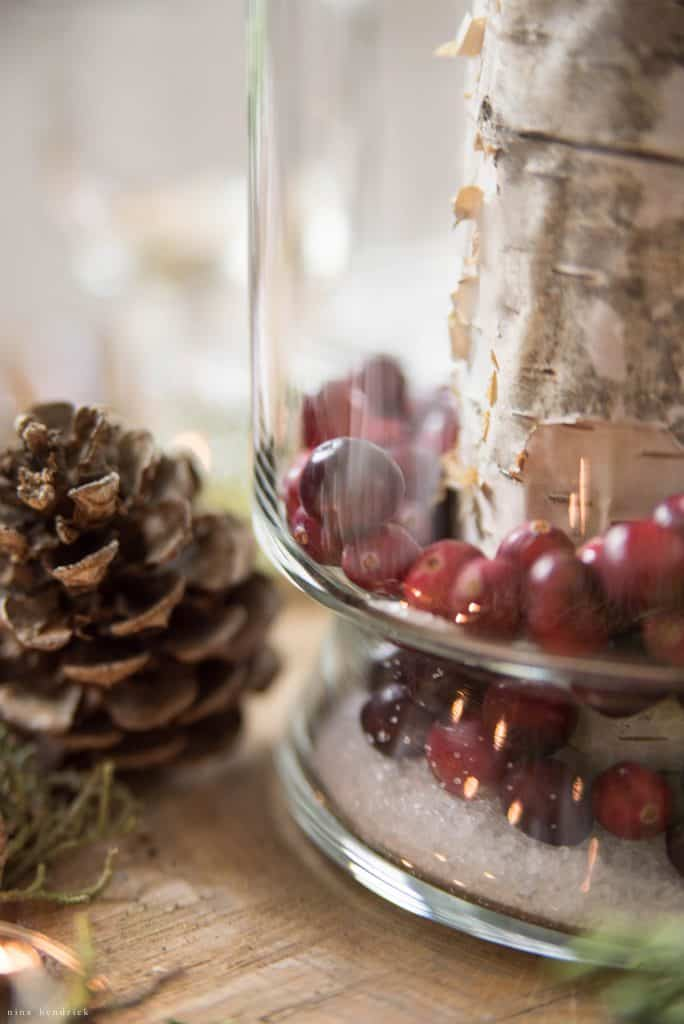 Christmas 2016 Nina Hendrick Holiday Housewalk | Cranberry and Pinecone