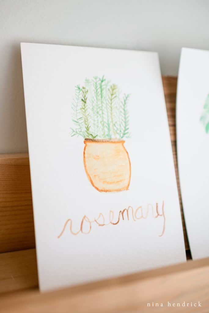 Rosemary in a Pot watercolor print