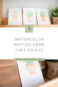 3 Potted Herb Watercolor Prints