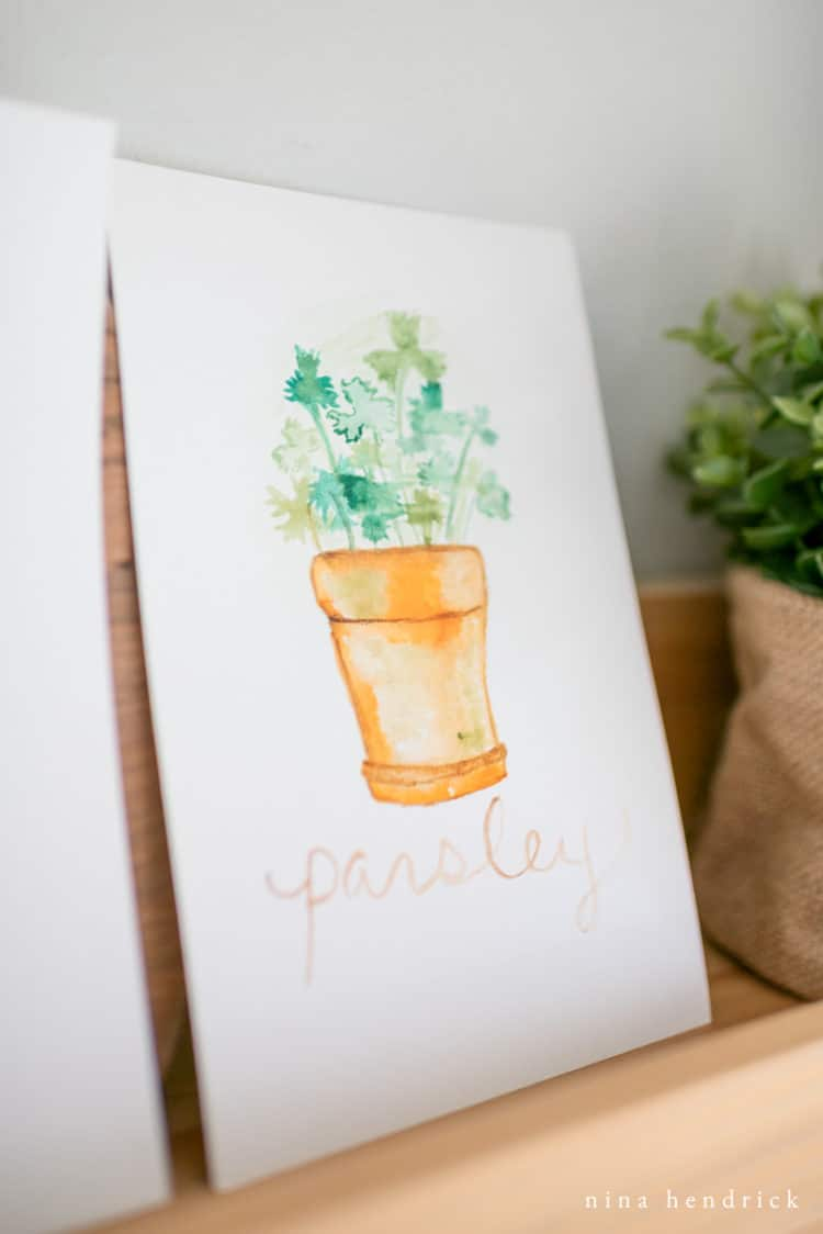 free printable potted parsley watercolor