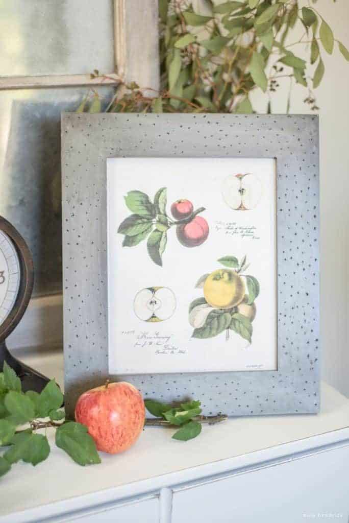 Gather autumn inspiration from this Vintage Apple Study Print and Vignette.