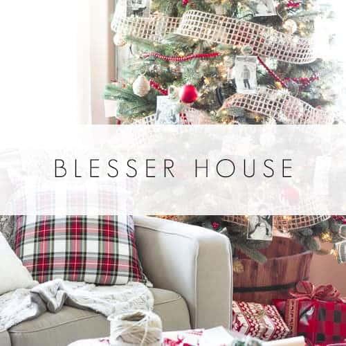 blesser-house